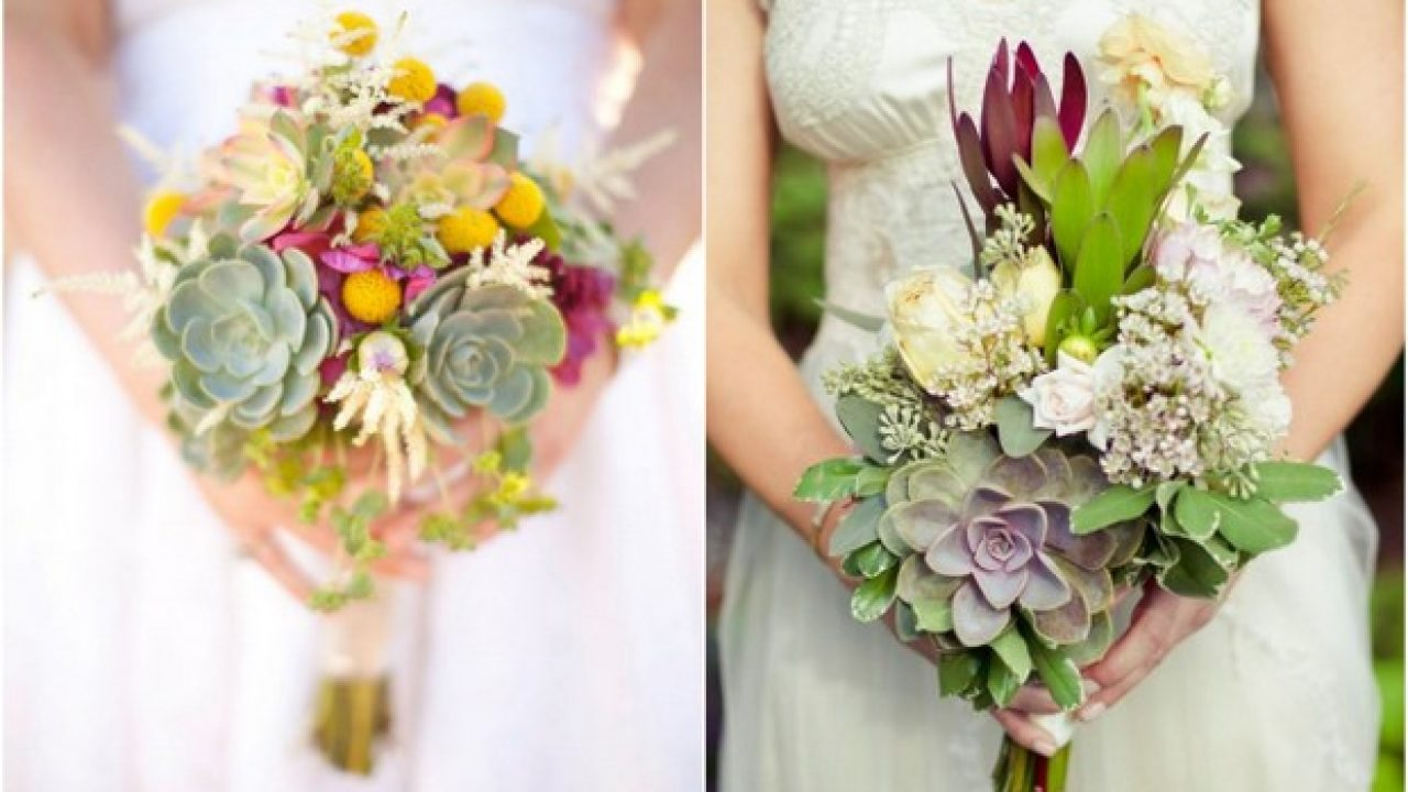 Wedding Trend 7 Ways To Use Succulent Plants In Your Decor Weddingsonline