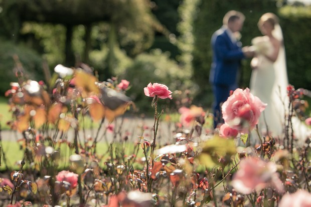 flowers-rose-garden-clontarf-castle-wedding
