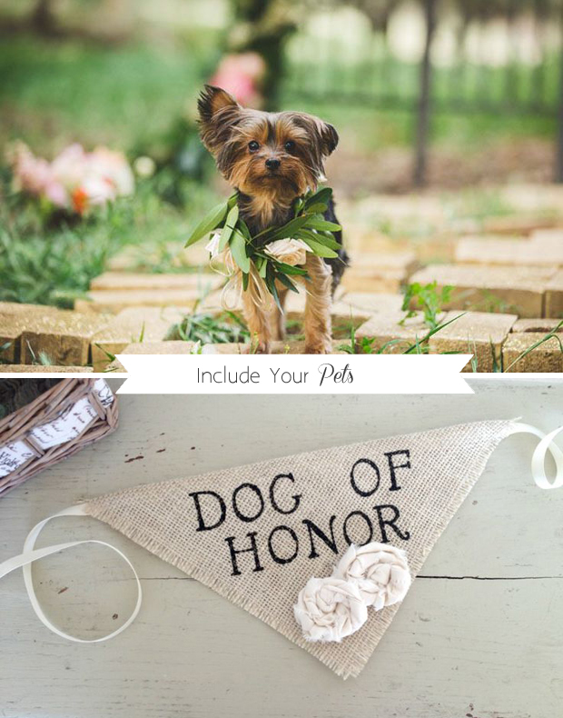 include-your-pet-in-your-wedding
