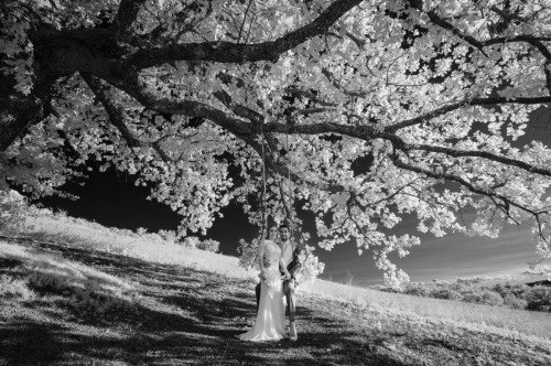 infrared wedding photography, a unique technique of photography