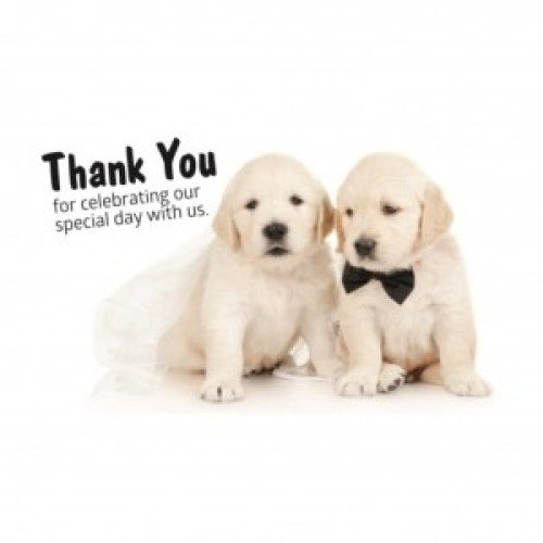 Favours - Irish Guide Dogs For The Blind - Wedding Favours