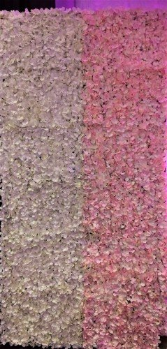 Flower Wall,Reception Decoration,Decor & Event Styling