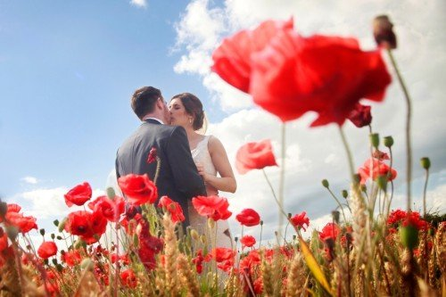 couple in poppyfield, red poppies, red flowers, couple in field, real wedding Barberstown Castle