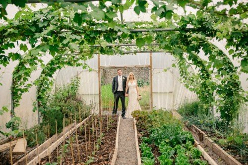 Tankardstown boast their our kitchen garden and polytunnels which provide produce year round for the kitchen.