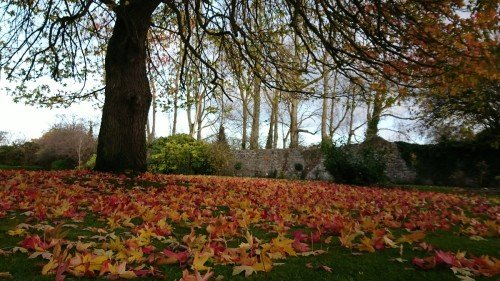 Autumn Wedding: Victorian Walled Gardens (October) at Leixlip Manor & Gardens
