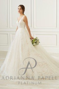 Adrianna Papell Available at Alexanders Bridal