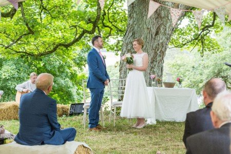 Ceremony under the Sycamore Tree